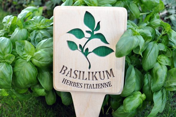 Basilikum & Co.
