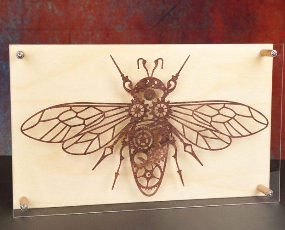 Insektenkunde